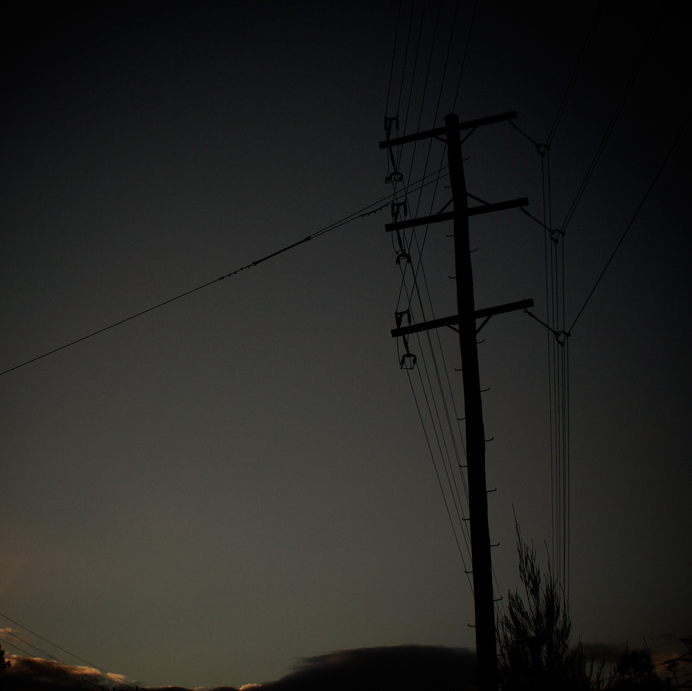 Simon-Portbury-Dawn-Wires-with-Trees.jpg