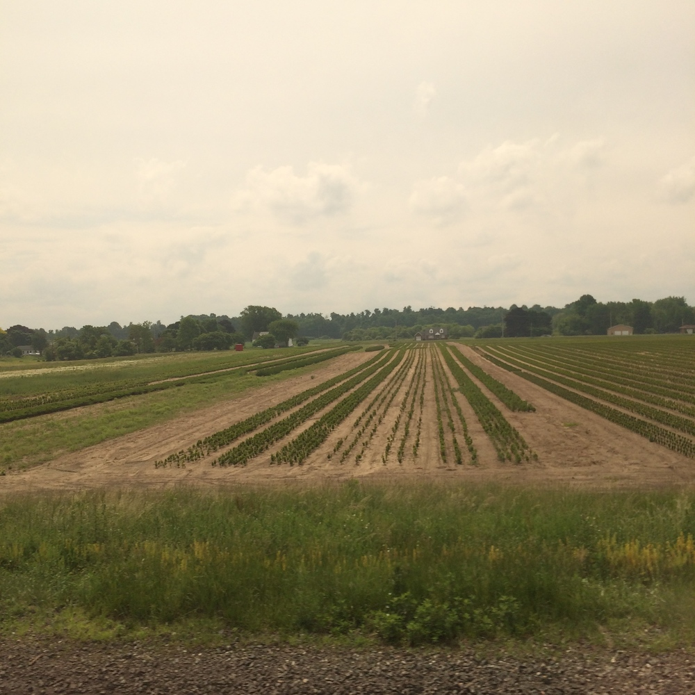 There is plenty of farmland in Northern Ohio and Pennsylvania