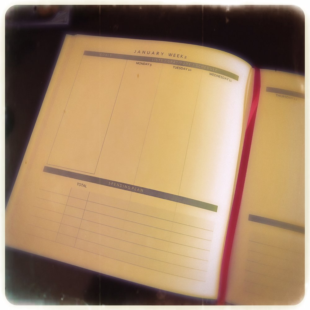 The Evolve planners weekly pages have a section to track spending right below your schedule every day