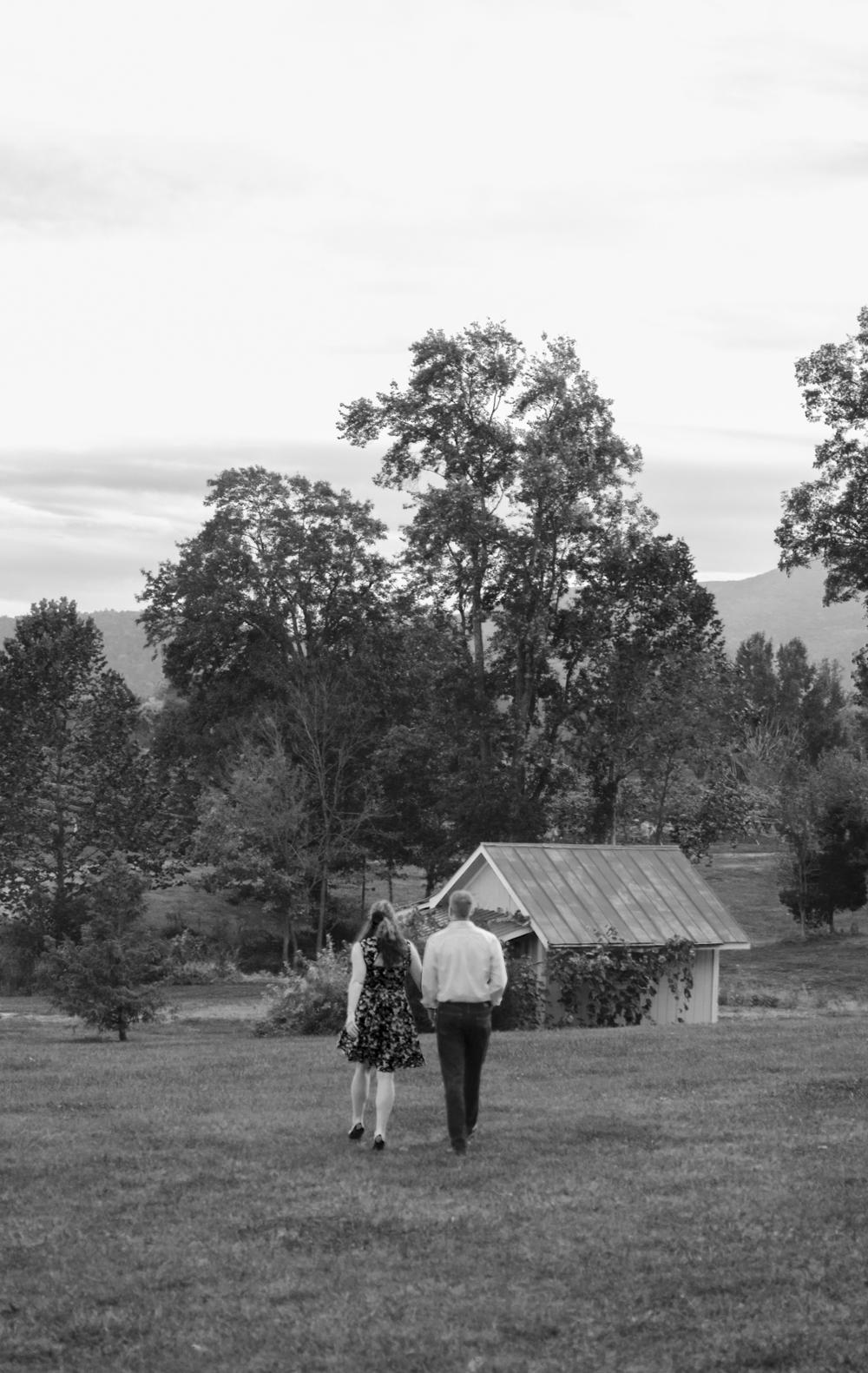 Veritas Vineyard in Charlottesville, Virginia, engagement photographer