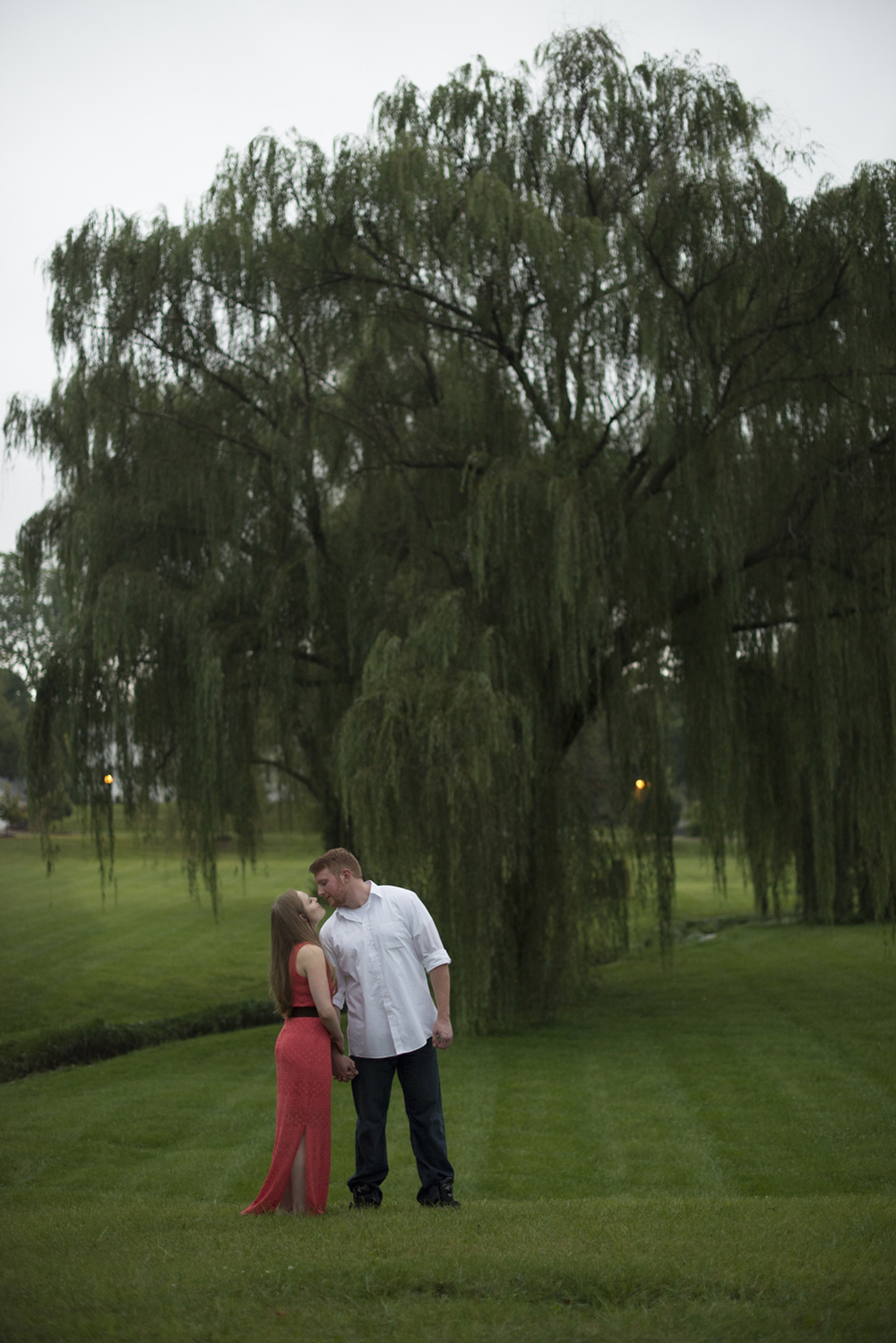 Giant willow tree at a beautiful engagement pictures in Downtown Staunton, Virginia
