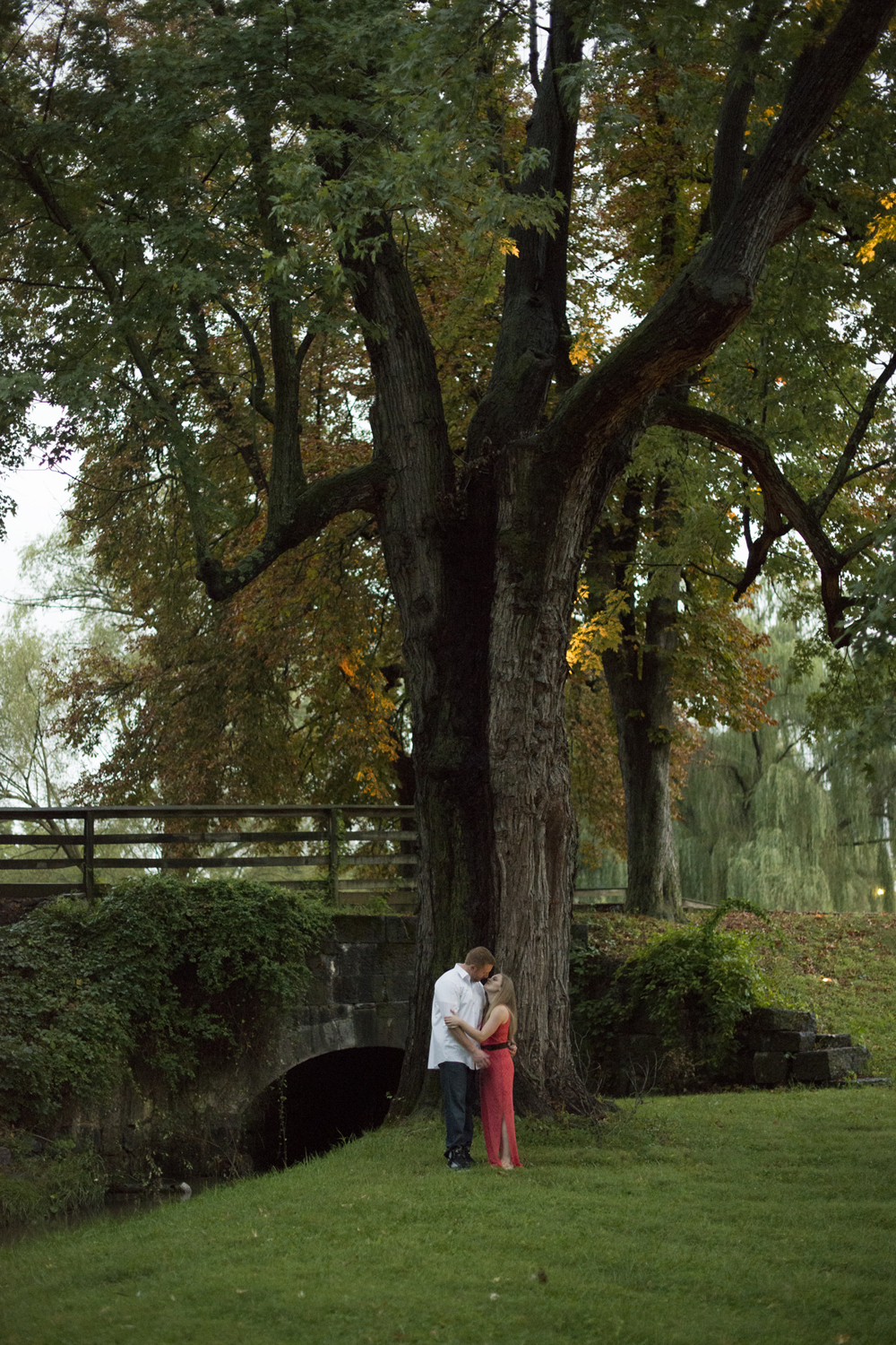 A huge tree in nature during a beautiful engagement pictures in Downtown Staunton, Virginia