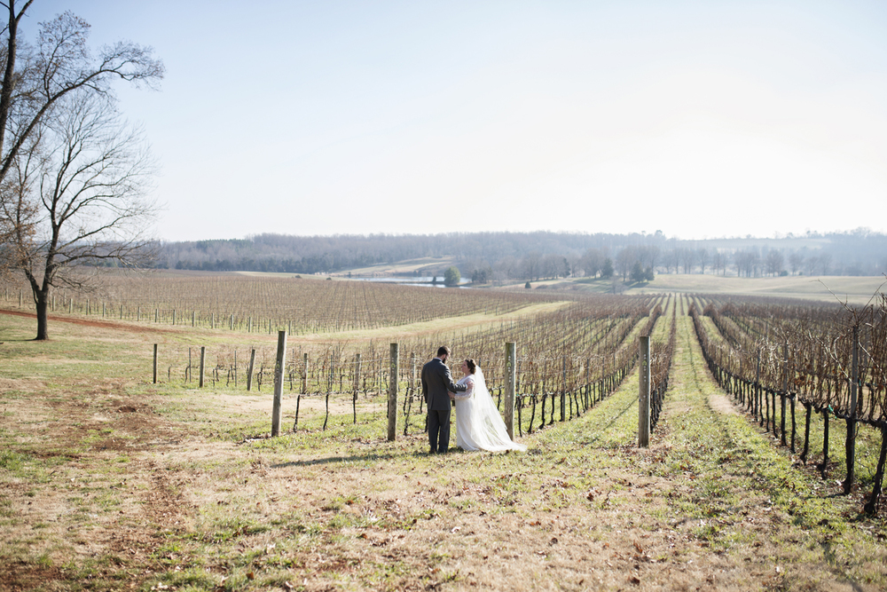 Bride and groom portraits at a vineyard