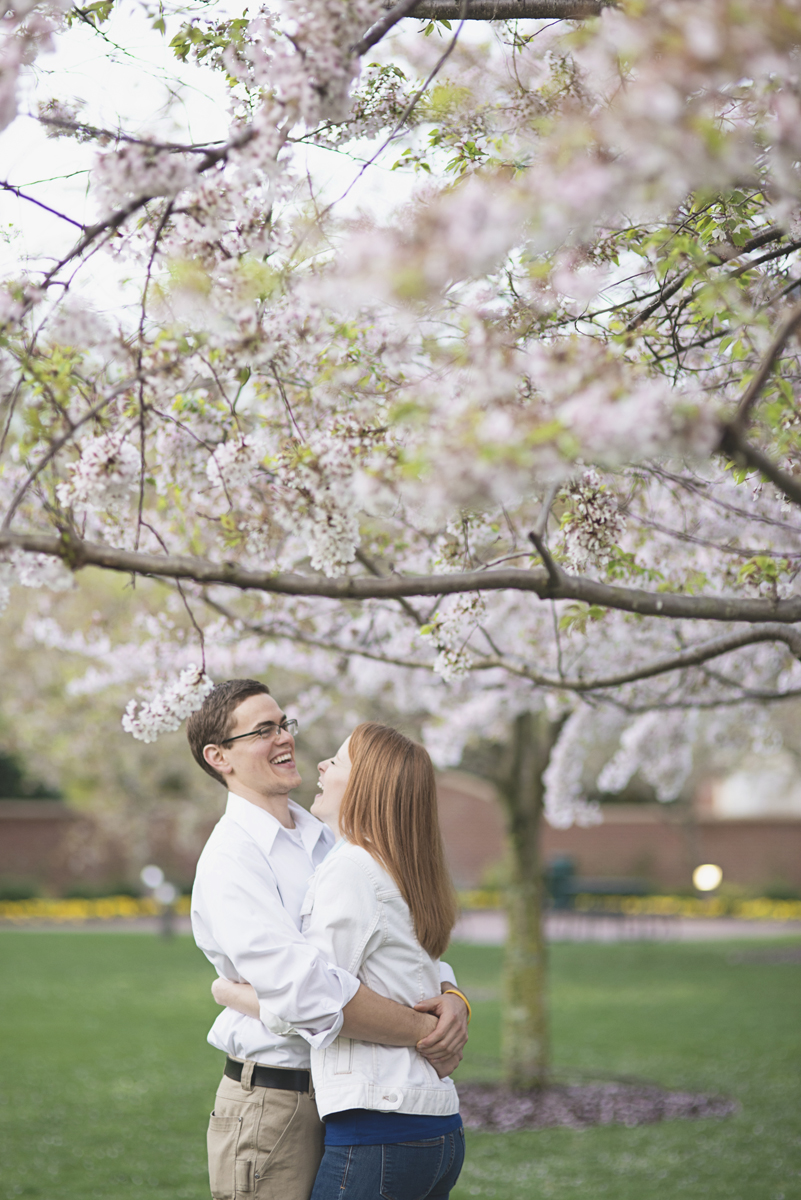 Spring cherry blossoms | Virginia Cherry Blossom Festival | Engagement session