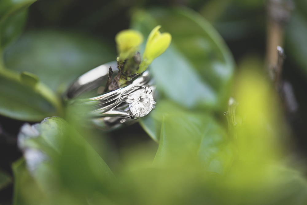 Wren Hall at William and Mary Wedding | Wedding ring shot