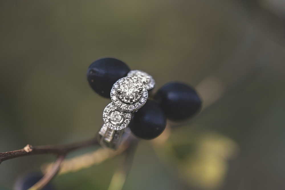 Engagement Ring Bling Shot with Winter Berries