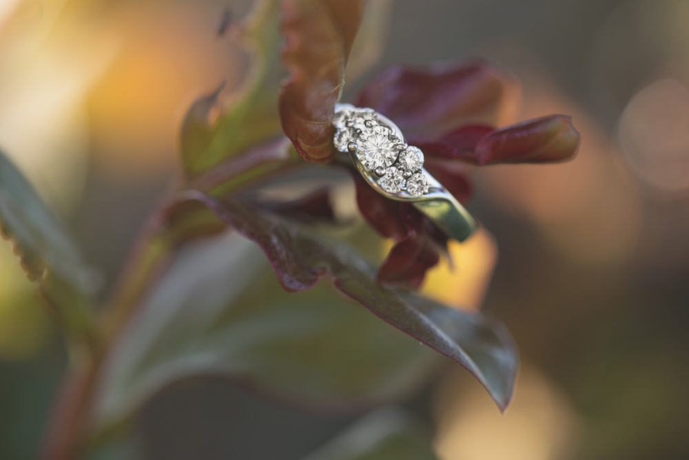 Stunning engagement ring picture | Hampton, Virginia