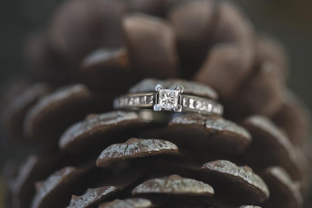 Pine Cone Ring Shot