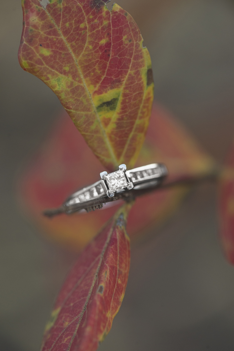 Fall Leaves Ring Picture
