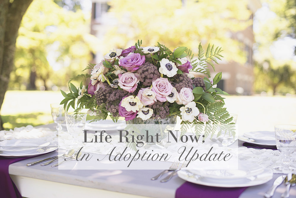Life Right Now: An Adoption Timeline and Update | Personal