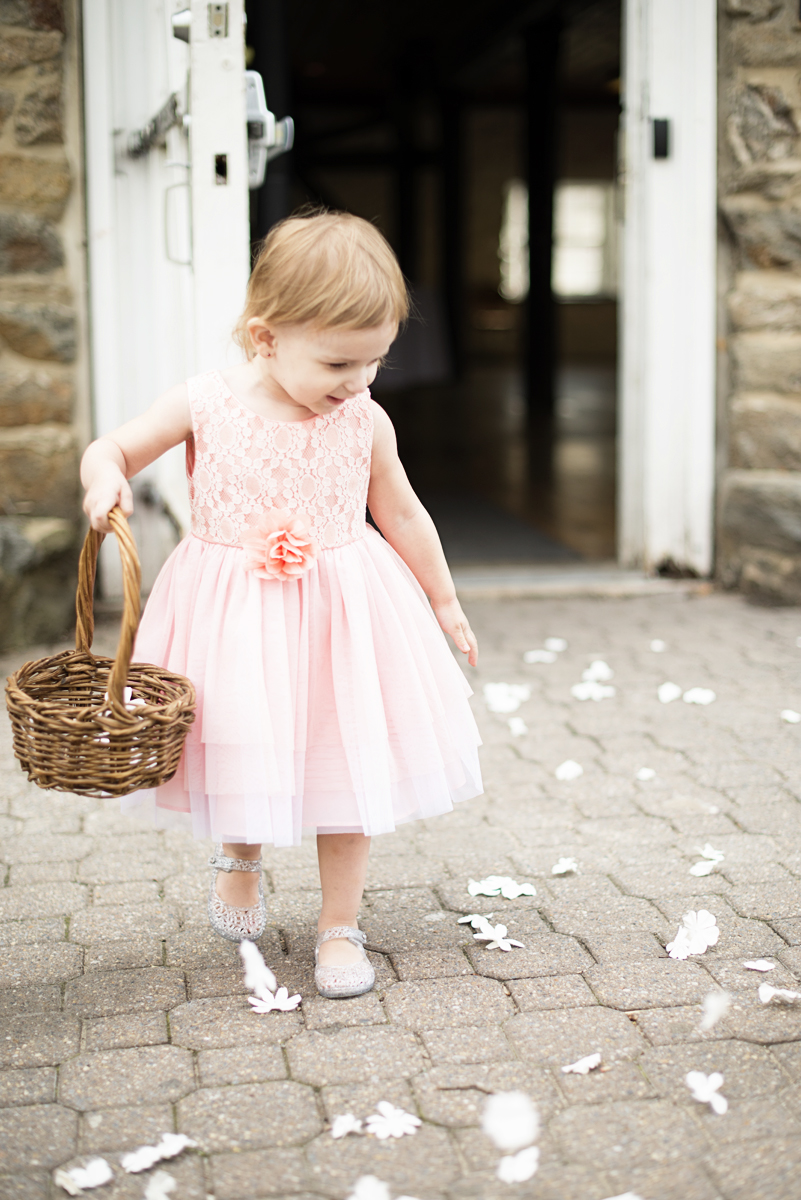 Blush and Gray Spring Wedding | Maryland Wedding | Blush flower girl dress