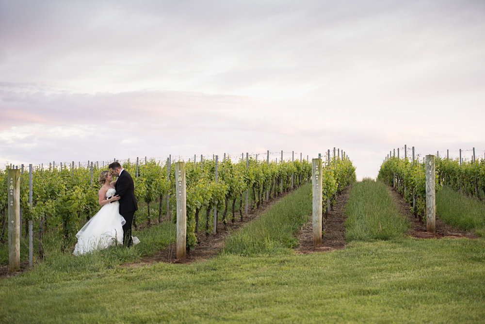 Albemarle Estate at Trump Winery Wedding | Bride and Groom Sunset Vineyard Portraits