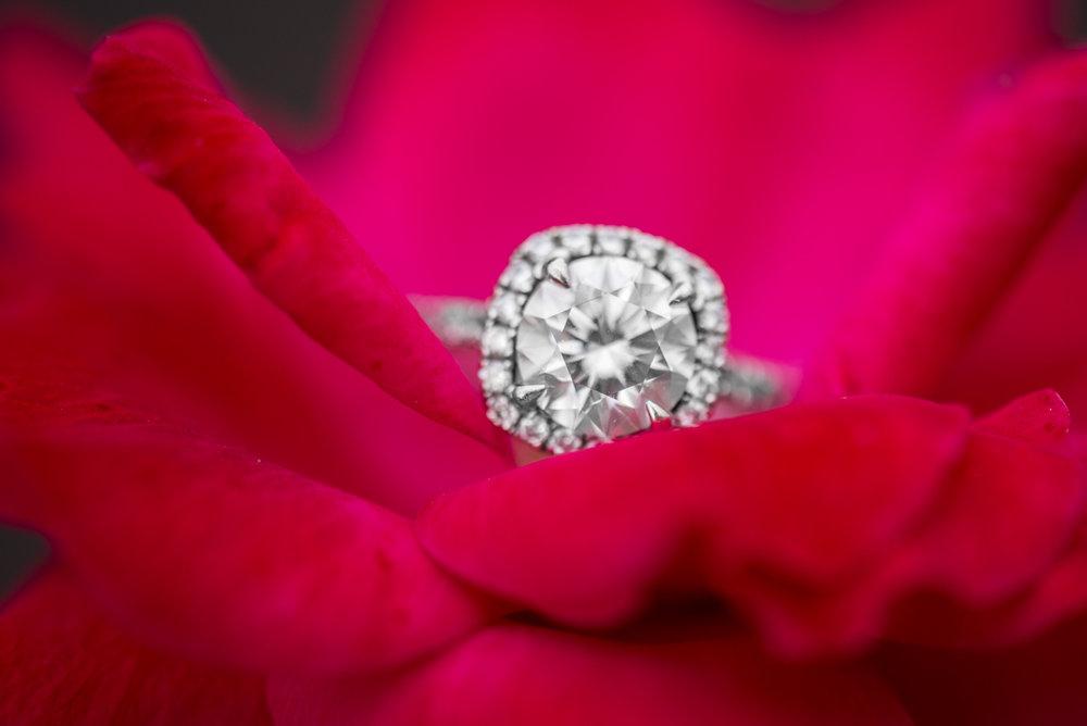 Pink Floral Ring Shot