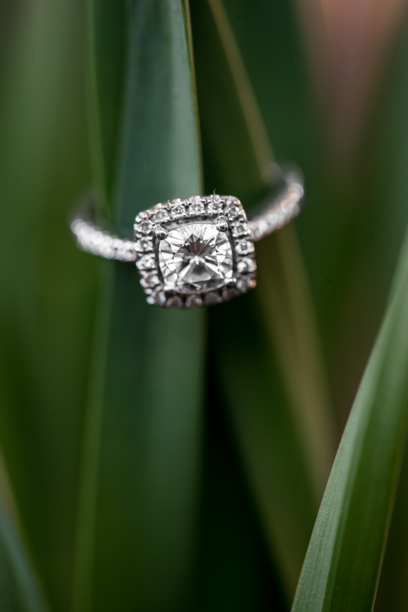 Green Grass Ring Shot
