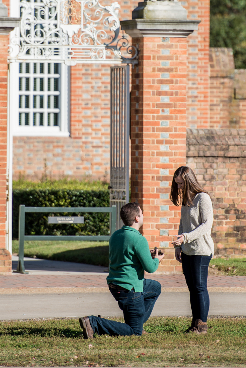 Colonial_Williamsburg_Proposal.jpg