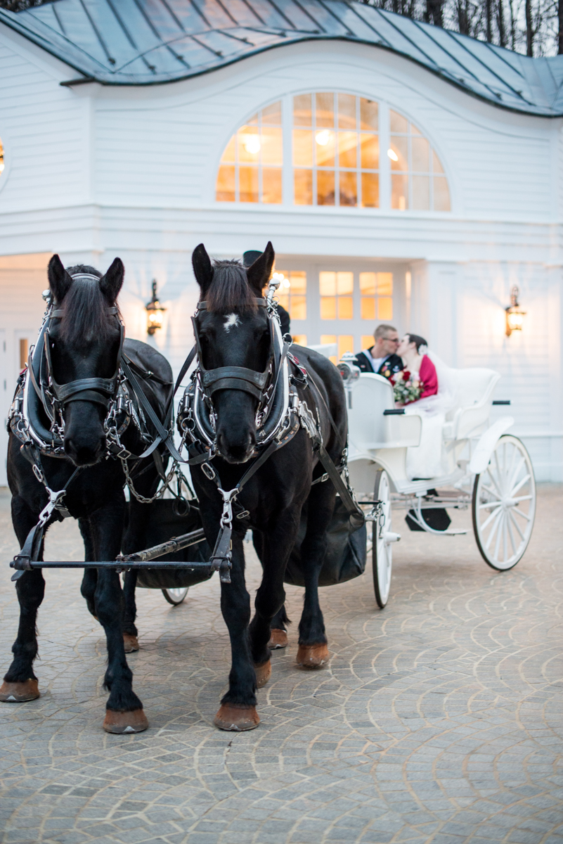Gold and Burgundy Winter Winery Wedding | Horse-drawn Carriage Bride and Groom Portraits