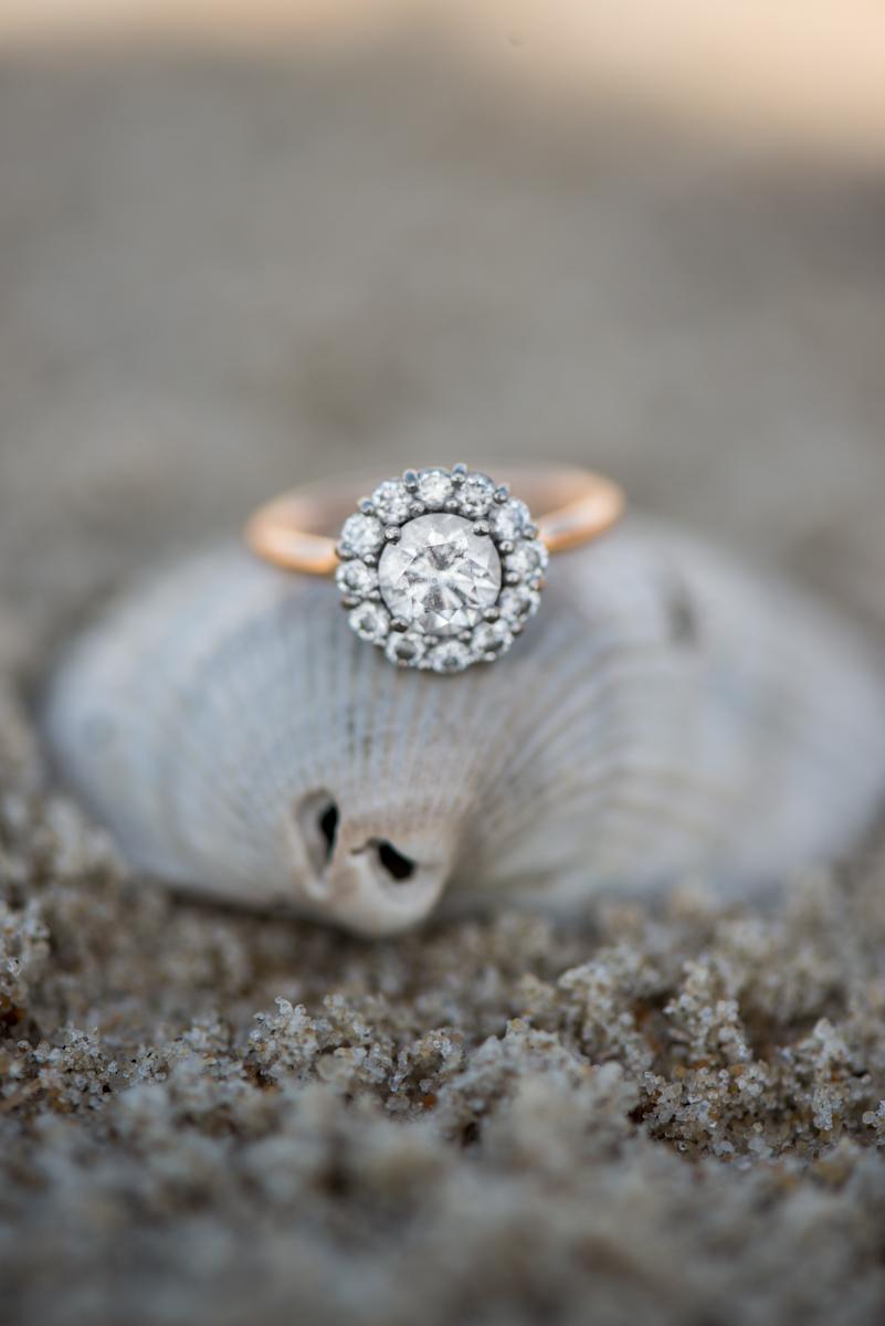 Seashell Beach Ring Shot