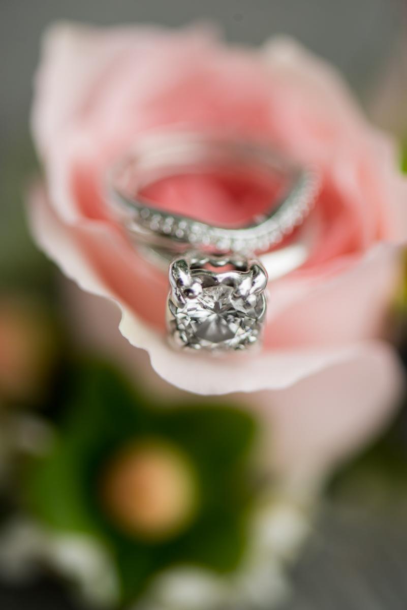 Blush and Burgundy Garden Wedding | Pink Rose Ring Shot