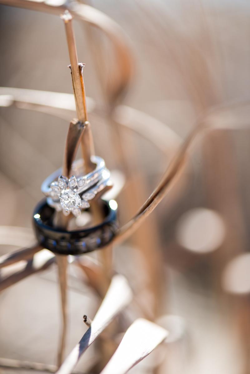 Wild Grass Ring Shot