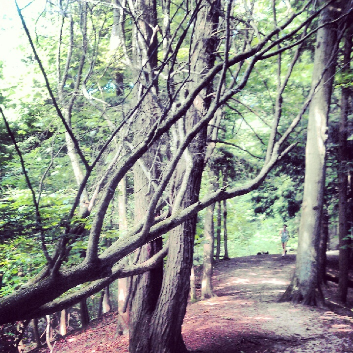 My daily running trail in Grand Haven--try climbing a ski hill four times a day!