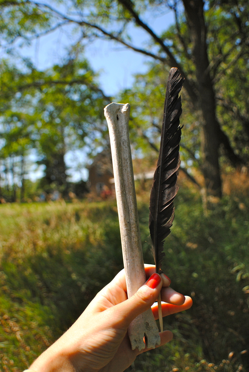 Found: Bone and crow's feather.