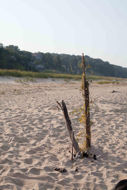 BeachWalk-15.jpg
