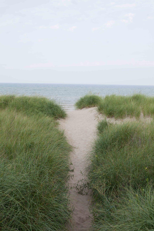 BeachWalk-35.jpg