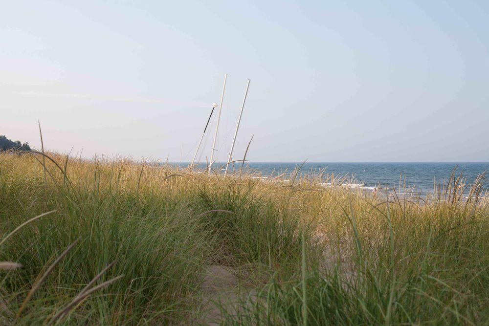 BeachWalk-38.jpg