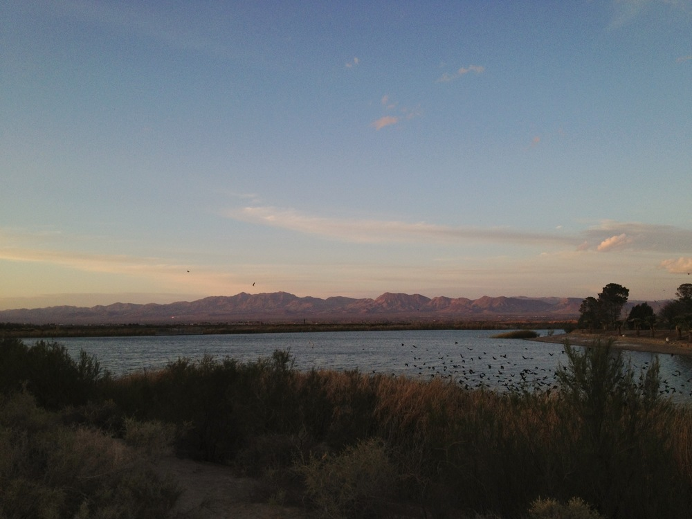 View from our campsite at Roper Lake State Park in Safford, AZ.