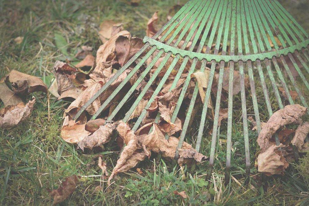 rake-the-town.jpg
