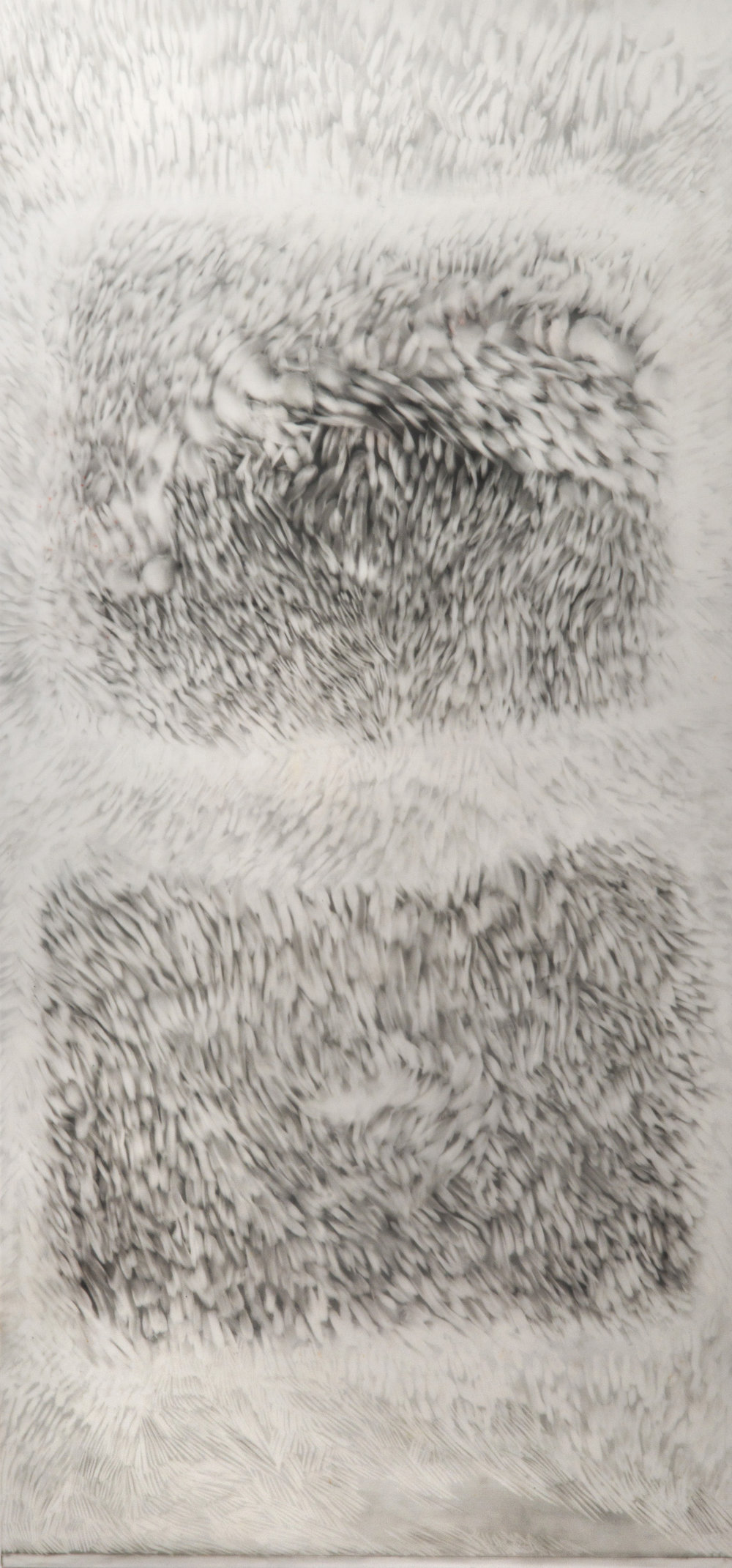Observed and Recorded Permutation of the Holy Spirit I (9.5 inches x 21 inches-pastel and graphite erasings on duralar)