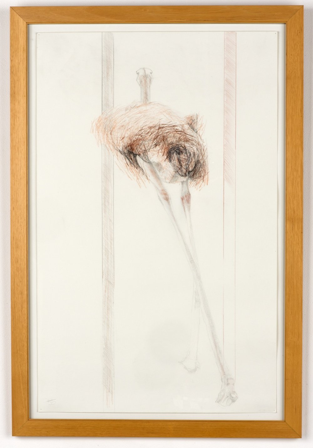 EVIDENCE 01  graphite, colored pencil on paper  24in. x 40in.  Notes: wood frame, behind glass and drawn with a pencil that was 6ft in length.