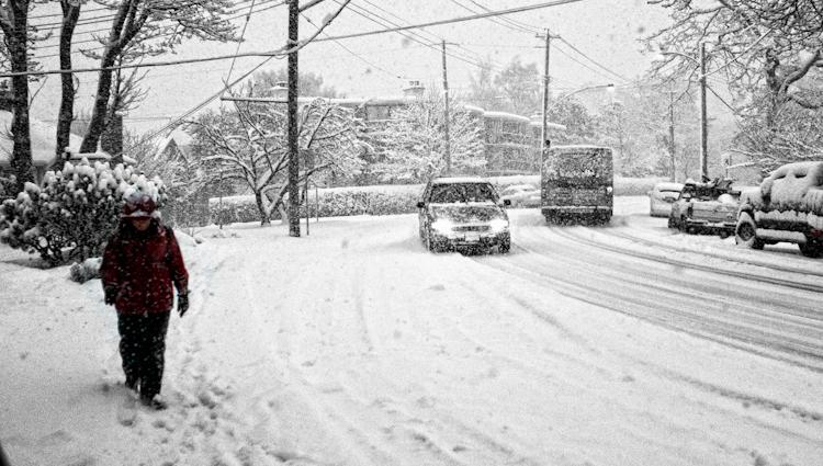 Snow110223_01.jpg