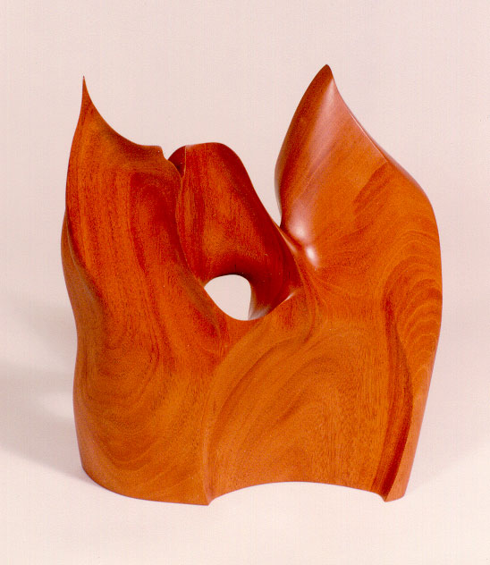Another in my Fire Wood series...  Honduras Mahogany