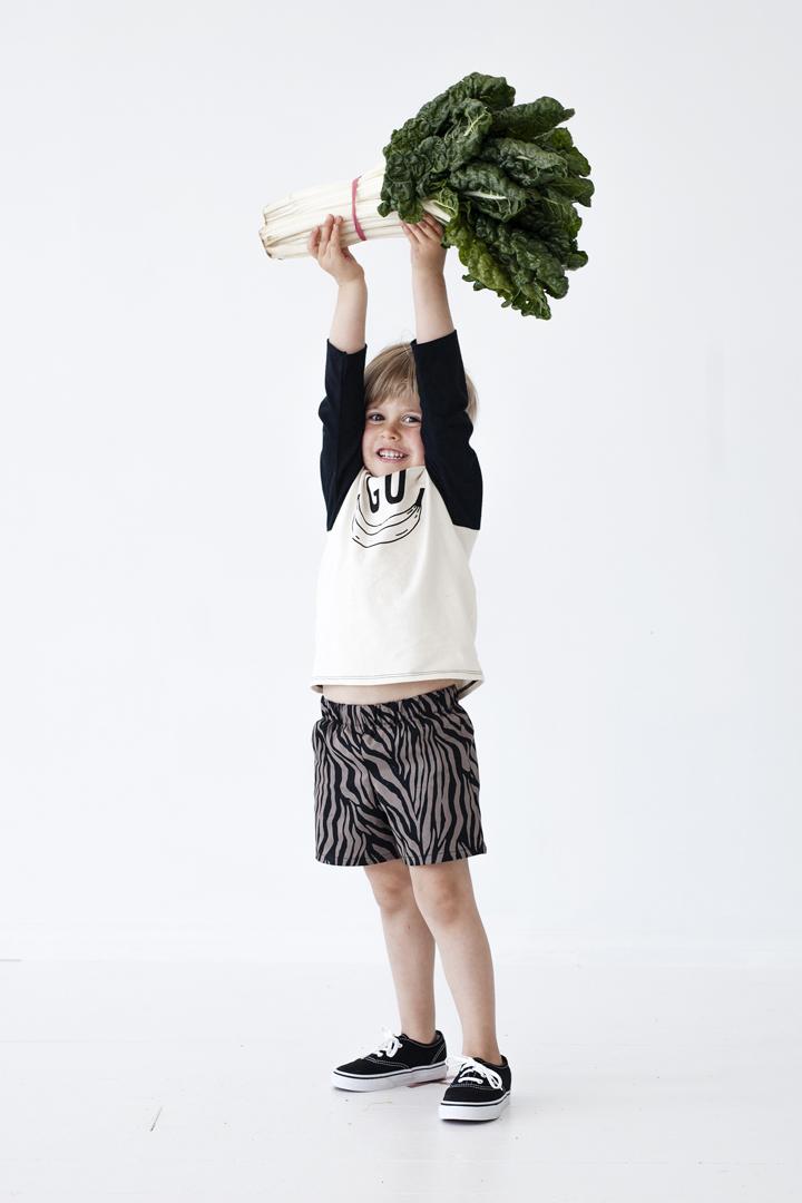 zebra shorts.jpg