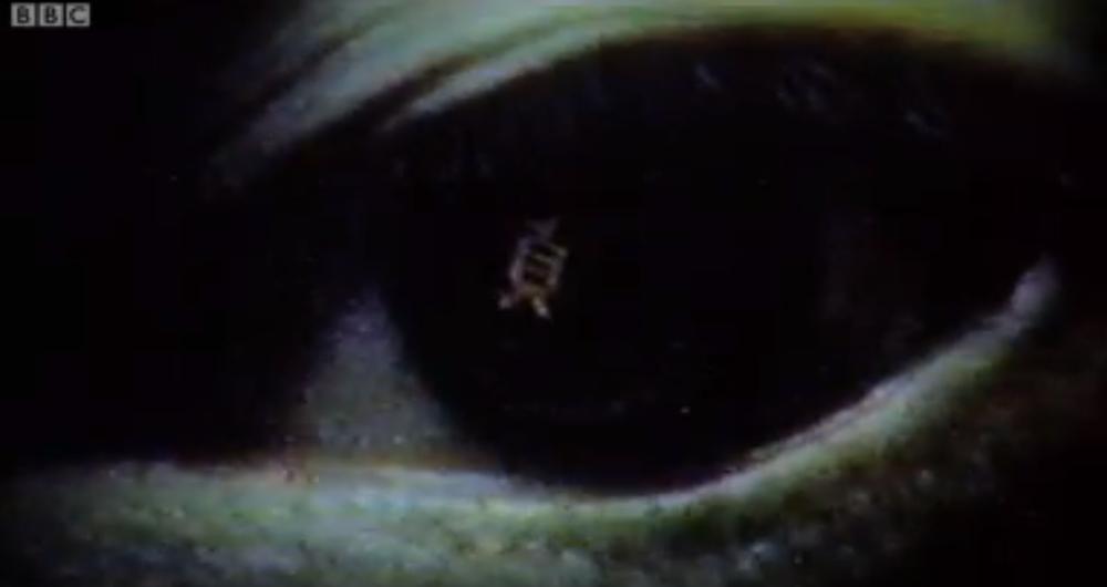 The Ring (Ringu)