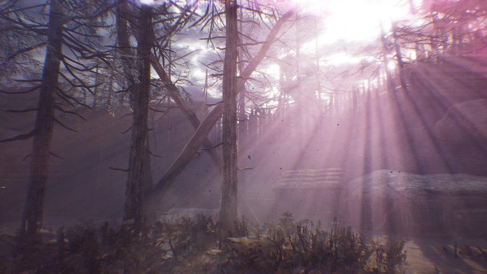 Hellblade_ Senua's Sacrifice™_20180227211533.jpg