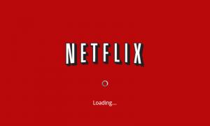 Netflix-LoadingShow-e13053210007611-300x180.png