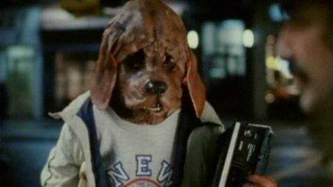 dog-head.jpg