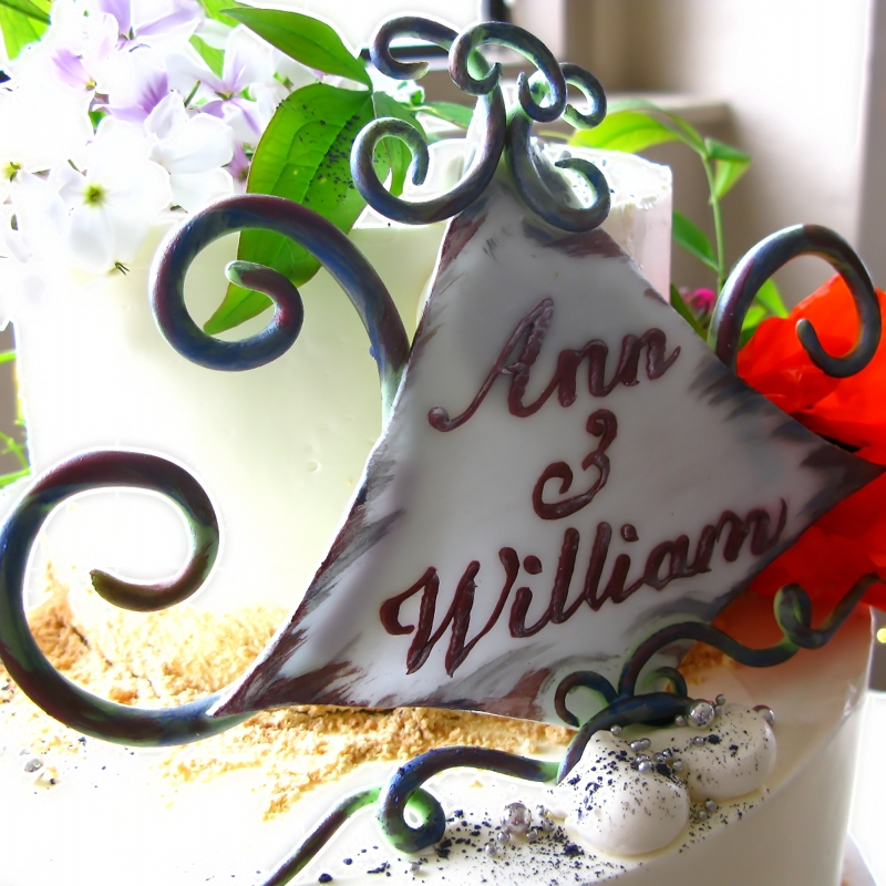 Ann and Will's Cake02.JPG