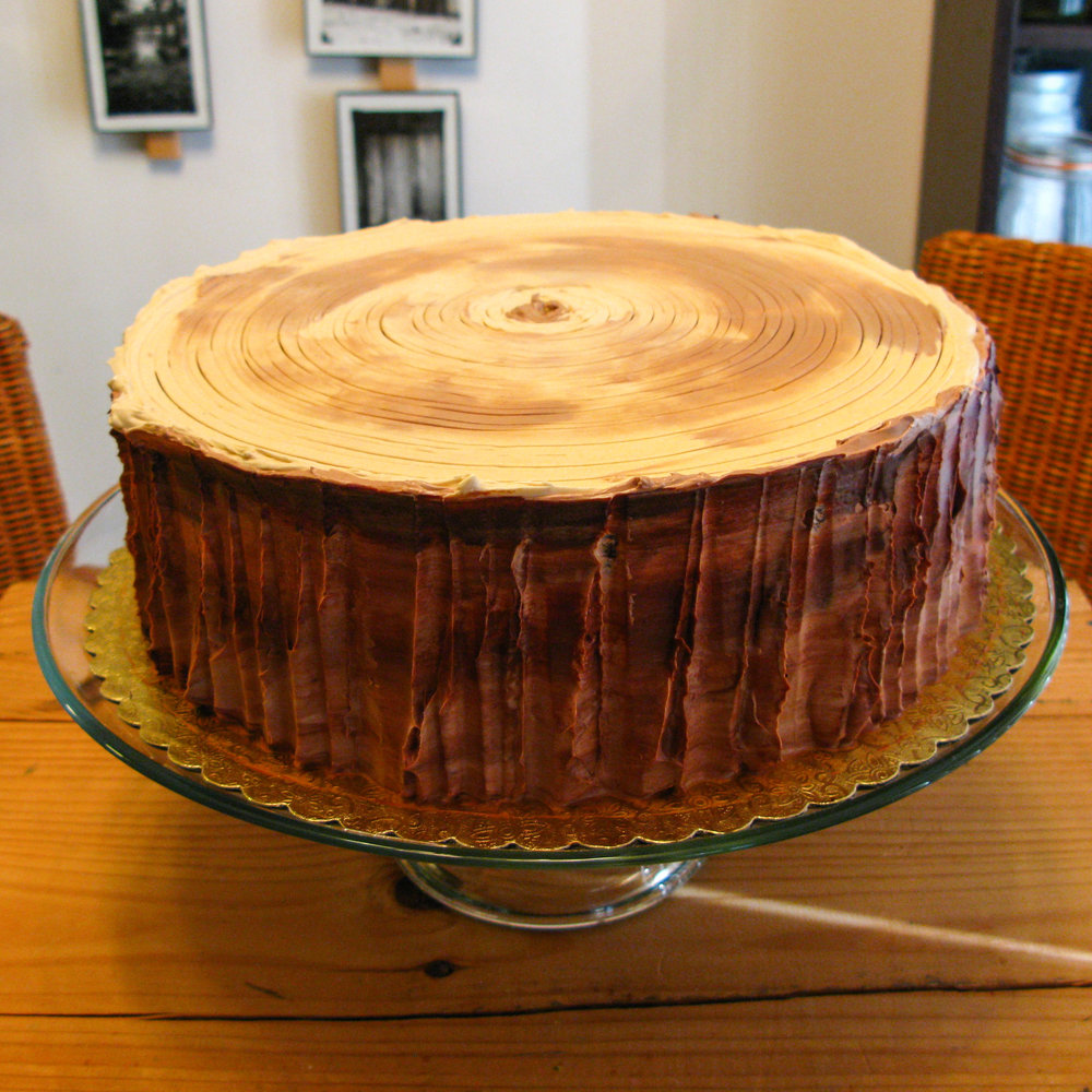 Old fashioned chocolate cake; buttercream wood stump decoration