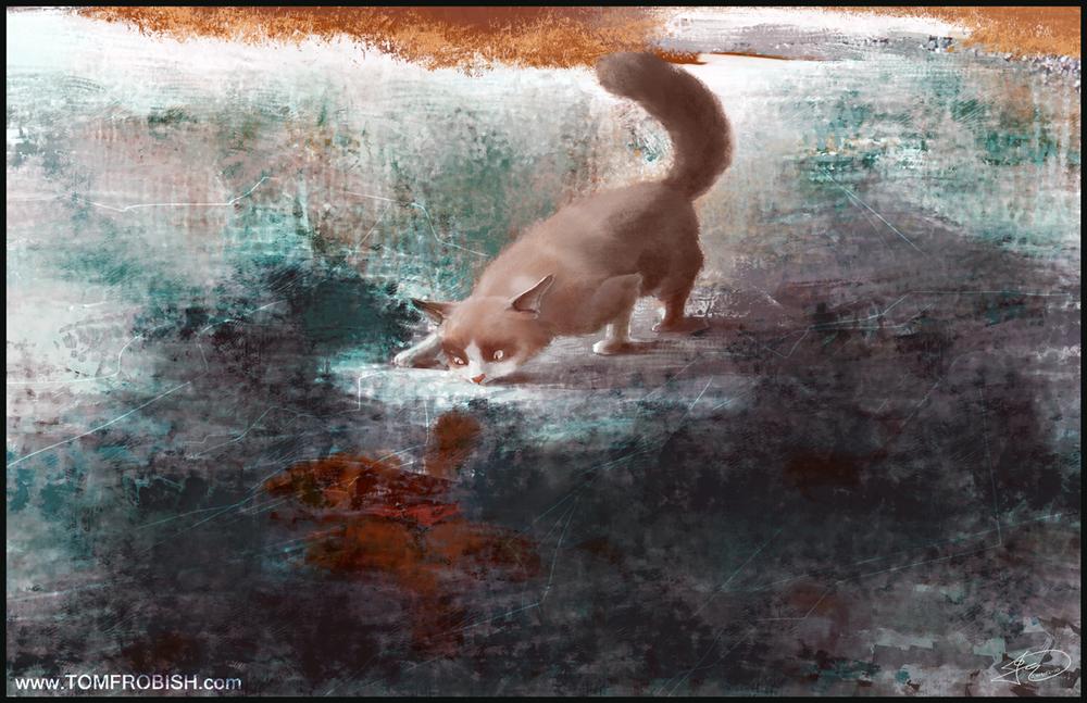 Rob Sandrocks Cat_Final.jpg