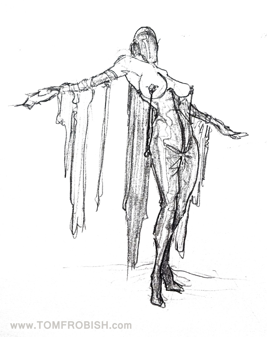 The Host Sketch