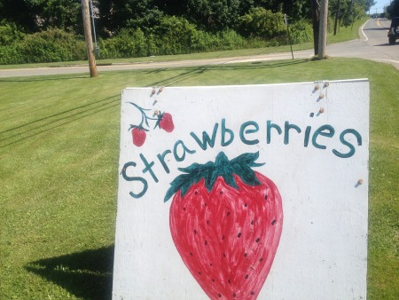 Strawberry Sign.JPG