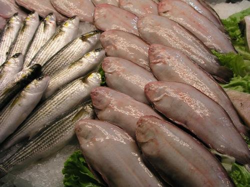 fish-market-venice1.jpg