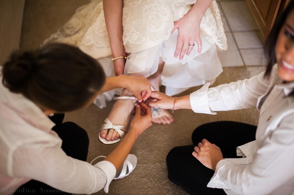 Allison and David Maneely's South Windsor CT Wedding-4340.jpg