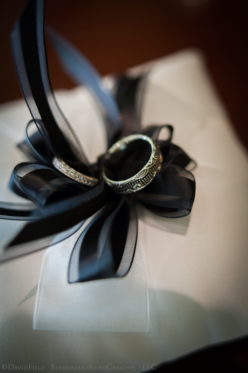 0004Lara and Joczan Riverview Simsbury Wedding-3301.jpg