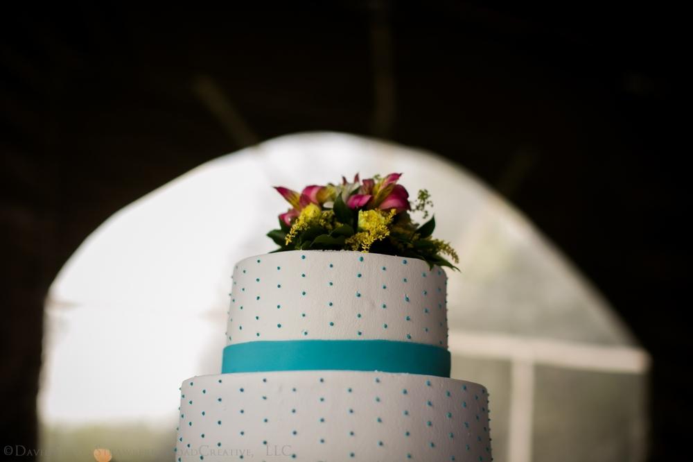 0482_Ellen and Ben Wrights Mill Wedding Teasers_Watermarked6755.jpg