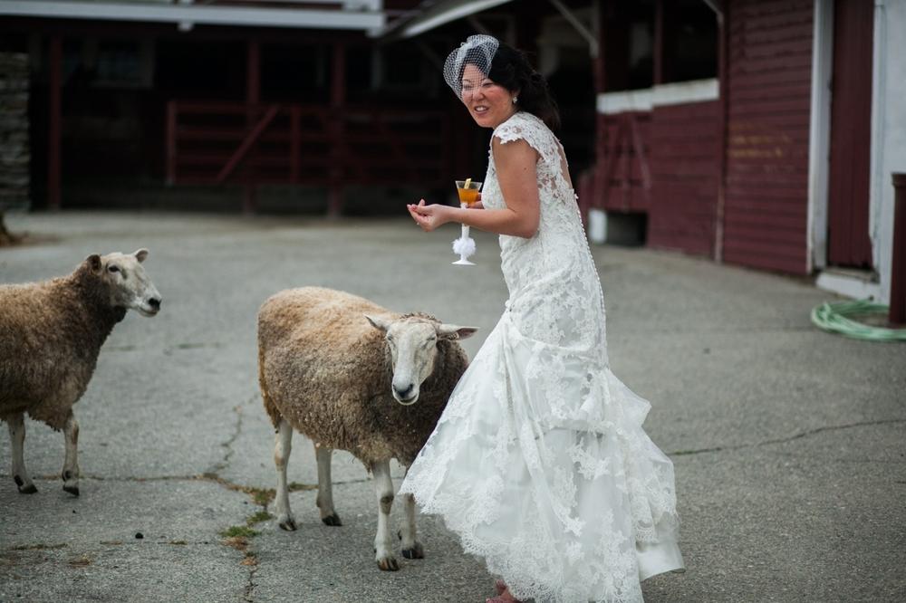 0045 Diana and Paul Golden Lamb Wedding Brooklyn CT 9388.jpg