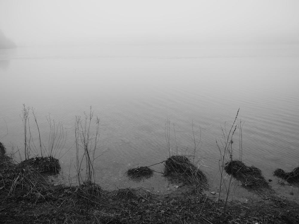FoggyGrasmere2.jpg